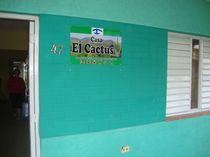 Foto 1 de El Cactus